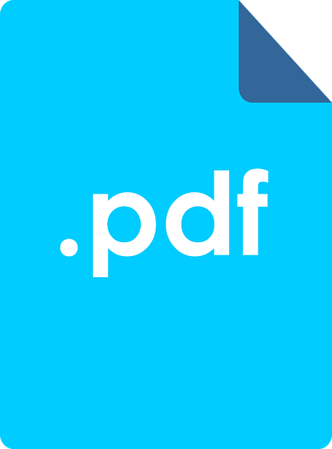 Adobe_PDF_icon11